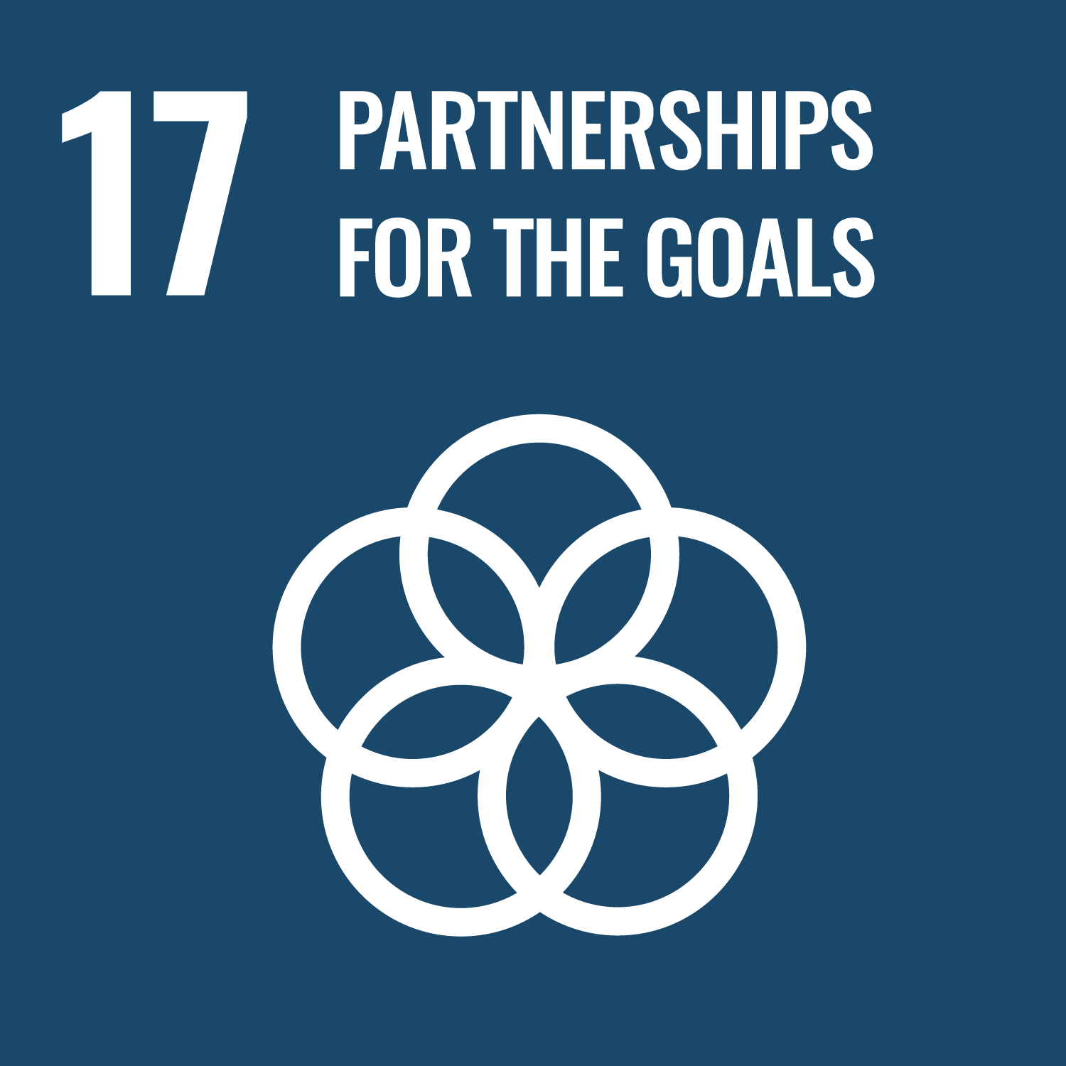 17_globalpartnerships