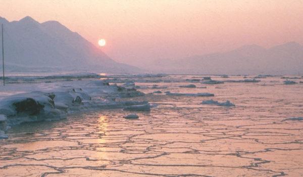 Lav sol over islagt hav