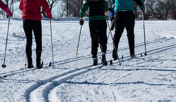Folk på ski