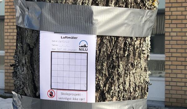 Måler for luftforurensning festet til et tre