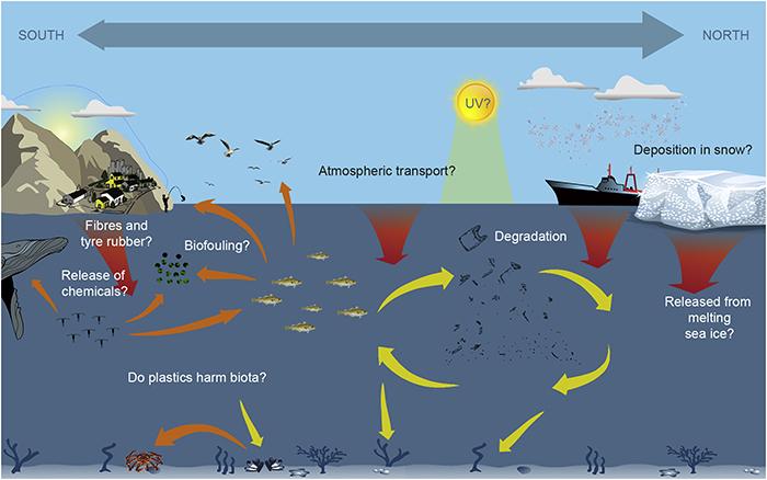Eksempler på kunnskapshull om distribusjon, transport og påvirkning av plastsøppel i arktiske systemer.
