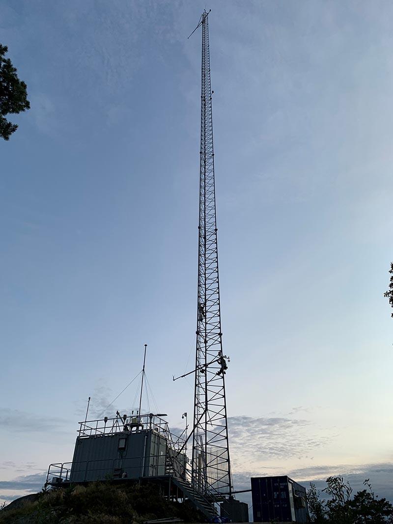Masta på Birkenes
