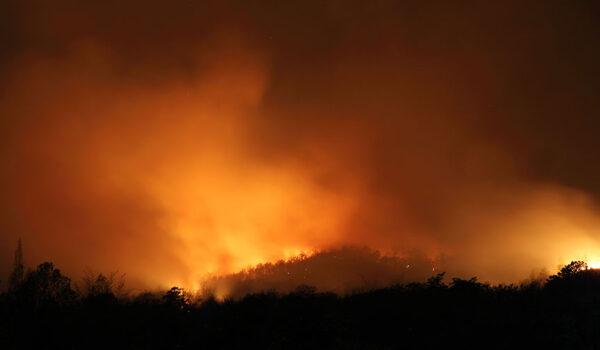 Skogbrann i California