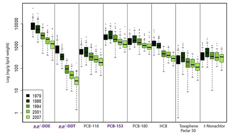 Figuren viser serumkonsentrasjon av utvalgte miljøgifter fra gjentatte målinger hos menn i perioden 1979-2007.