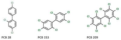 Molekylstrukturer av PCB.